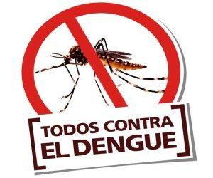 Golfito le declara la guerra al mosquito transmisor del dengue