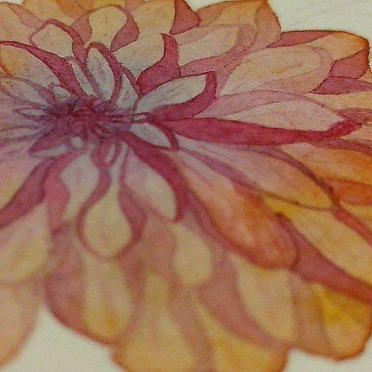 Flor en proceso, aún falta mucho 😥😥  #topopanda #illustration #ilustración #ilustracion #watercolorpaiting #watercolor #acuarela