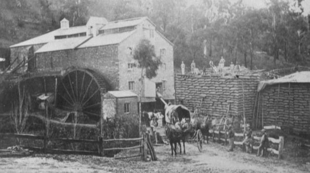 SA LIFE - Bridgewater Mill Update