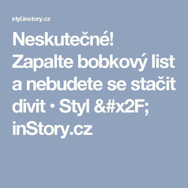 Neskutečné! Zapalte bobkový list a nebudete se stačit divit • Styl / inStory.cz