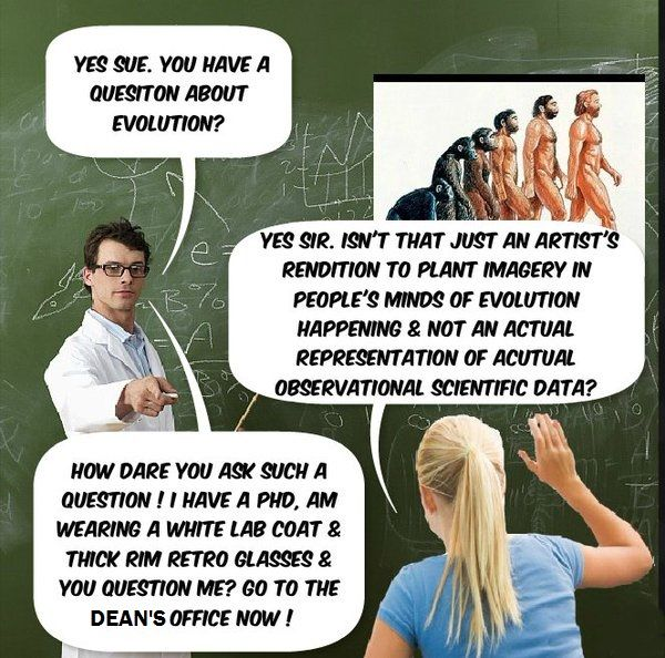 evolution vs intelligent design essay