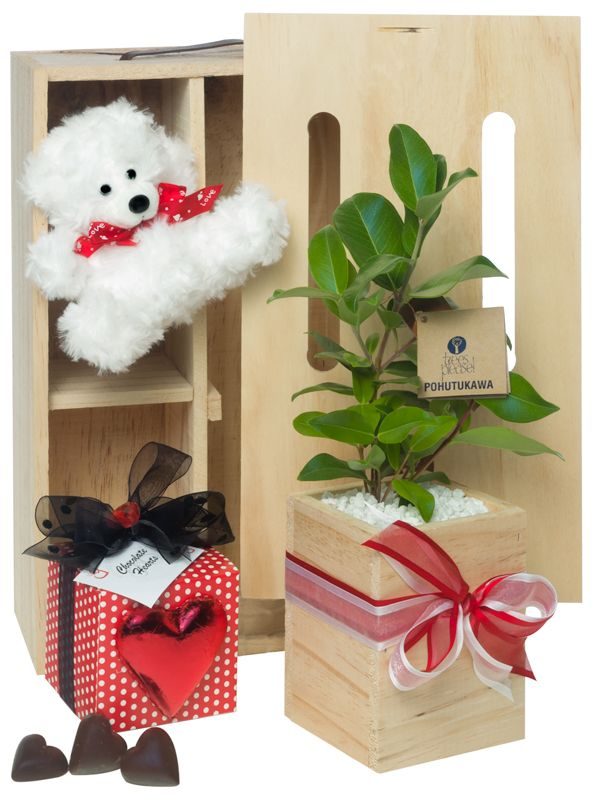 Valentines Day gift ideas by NZ Trees Please!