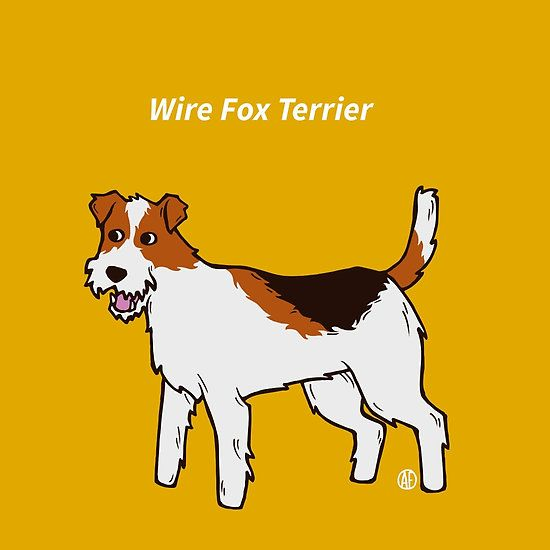 Wire Fox Terrier by AleFlavia