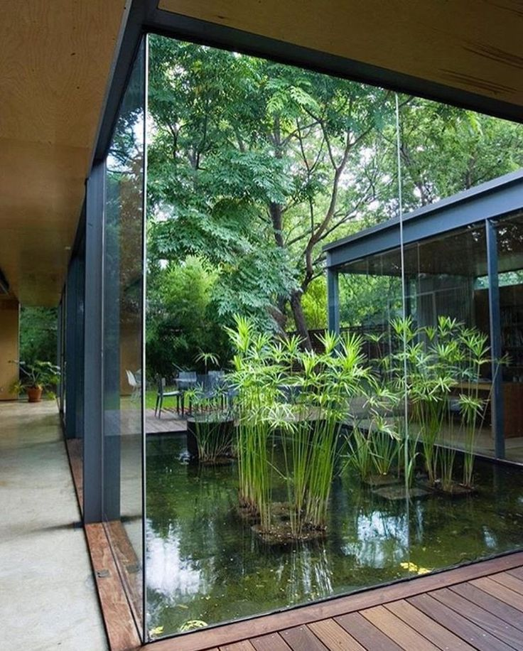 Best 25 atrium garden ideas on pinterest atrium house for Atrium garden window