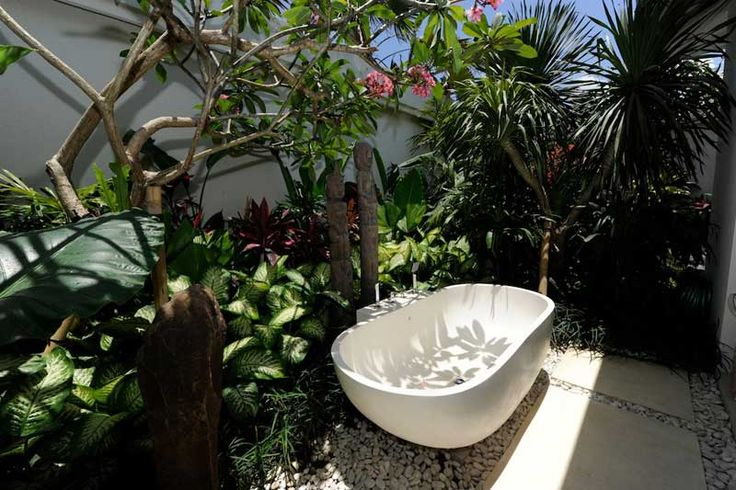 #BathTub di ruang terbuka dengan #TanamanTropis disekeliling