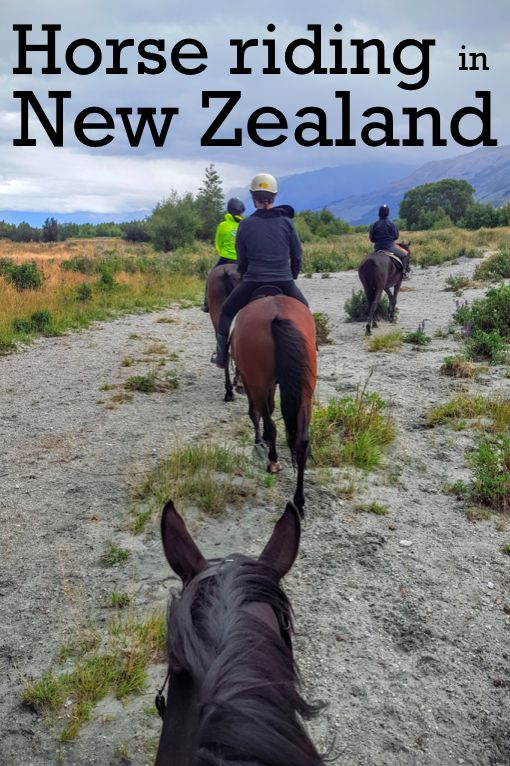 A literal walk through of the Trilogy Loop with Dart Stables in Glenorchy New Zealand. Beautiful vistas and sore thighs after 3 hours on a horse!