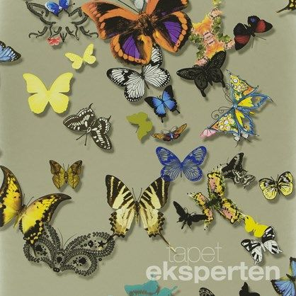 Lacroix Butterfly Gold