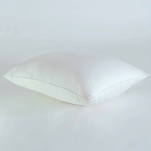 "Nano Cool Touch Pillow Rejuvenator Protector - Cooling Features Perfect for Hot Sleepers and Summer (Jumbo 20"" x 28"") -- Details can be found by clicking on the image."