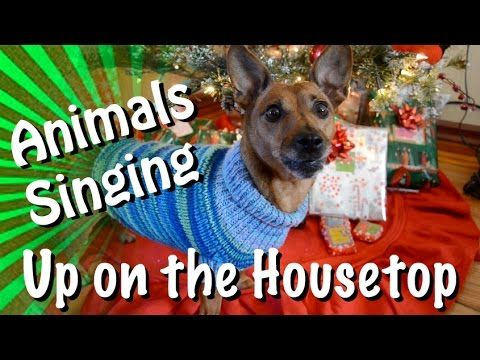 "A group of various pets from Talking Animals adorably sing the classic Christmas carol ""Up on the Housetop"" to the very best of their ability, although some seem to have forgotten their lines while..."