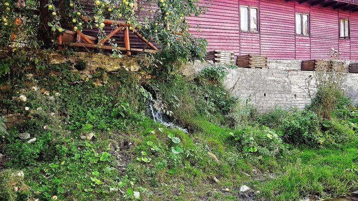 Valea Doftanei, Romania