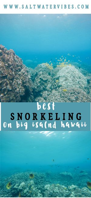 Big Island Hawaii Snorkeling
