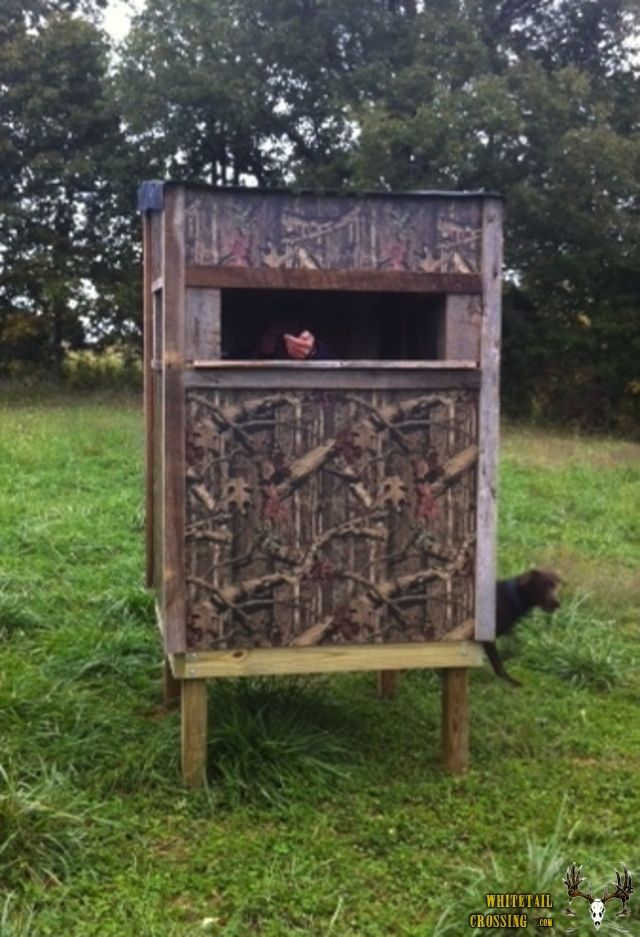 Best 25 hunting blinds ideas on pinterest hunting for Tree stand blind ideas