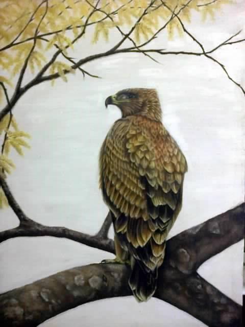 Autumn Eagle ~ Block Mounted Oil Painting by Dawn Du Preez #DawnDuPreez