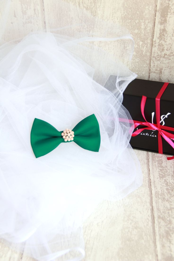 With a beautiful pearly center piece, an amazing shade of green and a design that's extremely feminine and fashionable, this magnificent bow tie for women is the perfect choice for you. Take your fashion style to the next level and accessorize your favorite outfits with an amazing bow tie that makes you look and feel more optimistic and full of joy every time. #bowtie #fashionstyle #fashionista #BowsByVaniaSzasz http://ebay.to/1TTpTx9