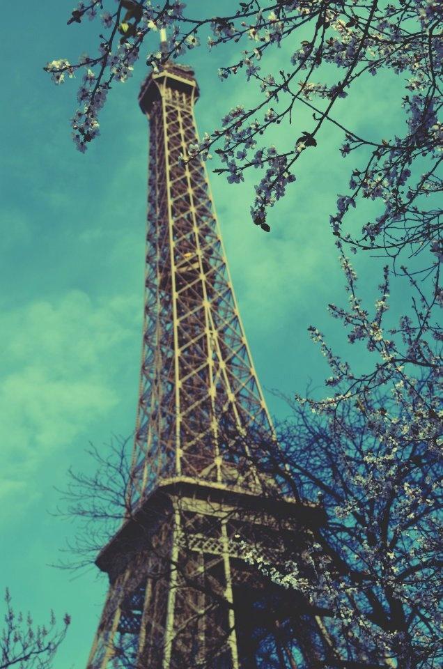 Paris,an eternal love_Eiffel tower