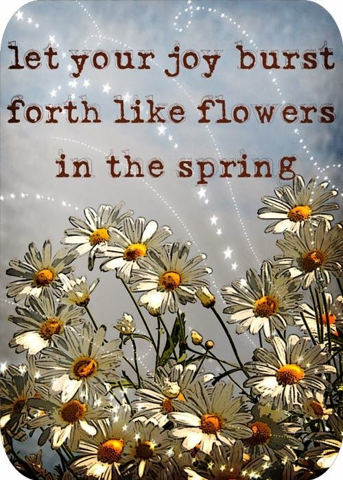 Let Your Joy Burst Forth Like Flowers In The Spring