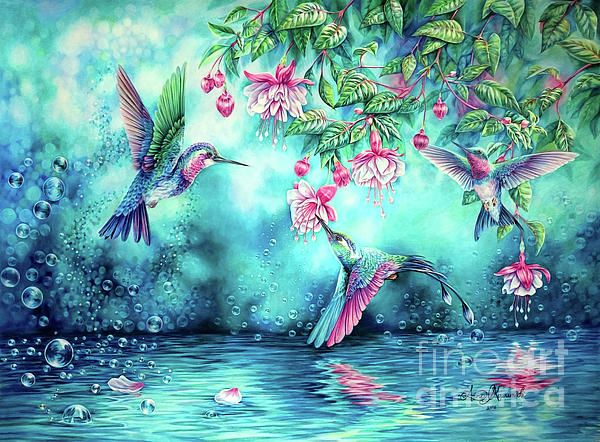 Hummingbirds and bubbles art colored pencil blue water and reflection
