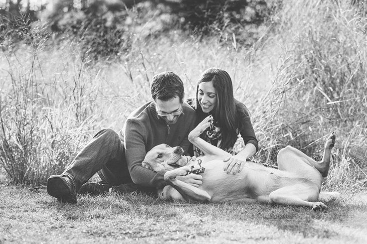 Engagement photos with dogs.. Looks like something Lucy would do