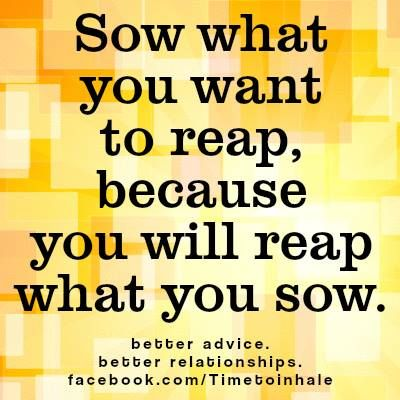 The meaning and origin of the expression: As you sow so shall you reap