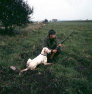 Jager met jachtgeweer en hond in weiland.
