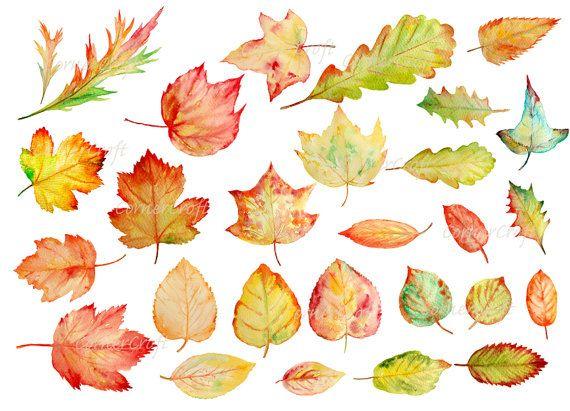 Hand painted watercolor autumn leaves fall leaves от CornerCroft