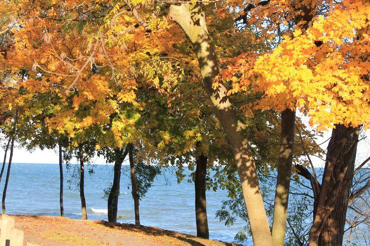 Fall beauty in Niagara on the Lake