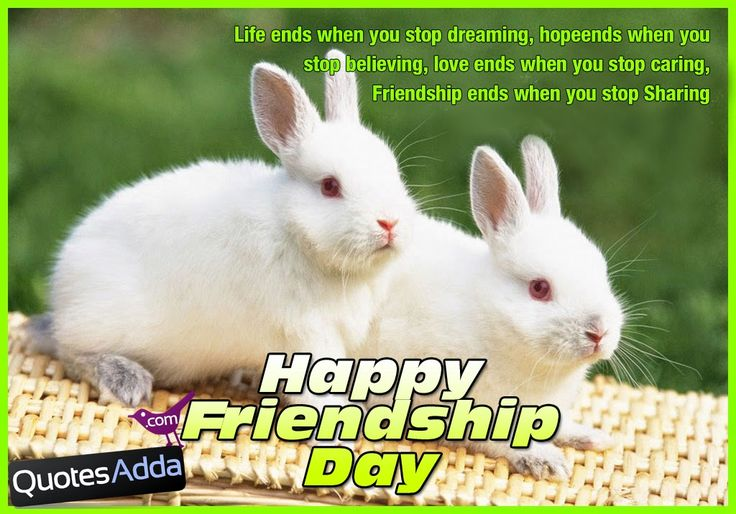 Friendship Day Picture Messages in English | QuotesAdda.com | Telugu Quotes | Tamil Quotes | Hindi Quotes |