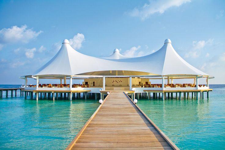 Fehér homok és pálmafák kereszttüzében merülhetsz el a türkizkék tengerben. #Maldív-szigetek #Nyár2014