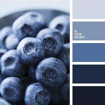 color palette-1704. Light gray-blue and dark blue tones - monochrome color palette of blue berries. These colors are often used for dyeing natural fabrics: linen, cotton. The combination of colors is organic in male and female, business and everyday wardrobe, as well as in the dining decor. Linen and paper napkins muted blue and blue colors useful for picnic, barbecue.