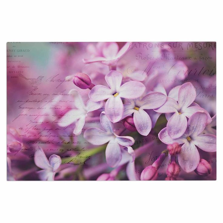 "Sylvia Cook ""French Lilacs"" Purple Photography Decorative Door Mat"