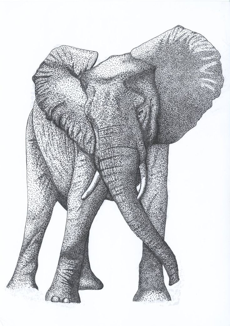 Pointillism Elephant By Kaotickell Dot Stippling Art