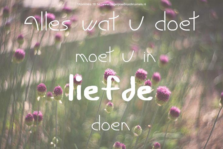 Alles wat U doet, moet U in liefde doen. 1 Korintiërs 16:14 #Liefde https://www.dagelijksebroodkruimels.nl/1-korintiers-16-14/