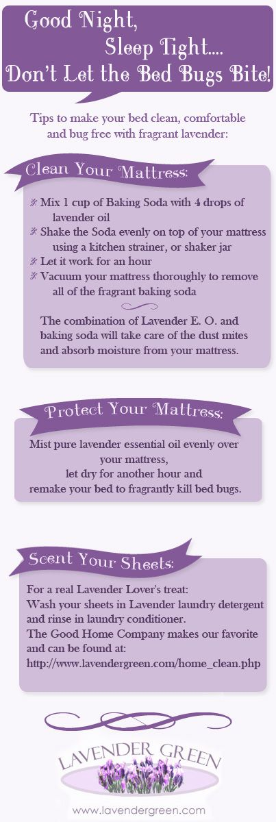 Getting rid of #Bedbugs with #Lavender