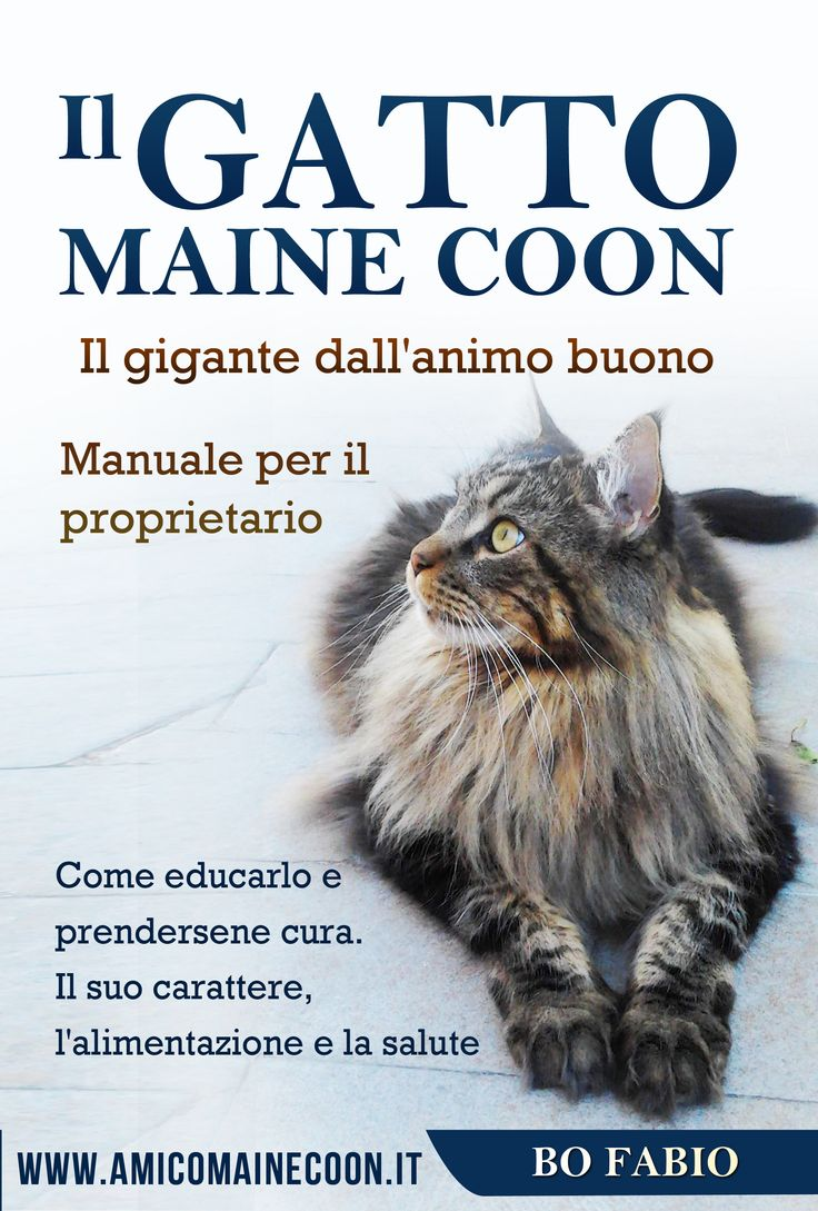 "È online l'ebook ""Il gatto Maine Coon - Manuale per il proprietario"" di www.amicomainecoon.it Questo ebook, in formato PDF, rappresenta un modo semplice, veloce ed economico per poter avere, a portata di mano, tutto ciò che necessiti per scegliere, crescere e convivere al meglio con un gigante buono e affettuoso come il Maine Coon. Scopri di più >> https://amicomainecoon.leadpages.net/ebook-il-gatto-maine-coon/ #ebook #mainecoon #amicomainecoon"