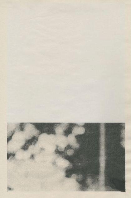 // ann-marie rayney, silkscreen.