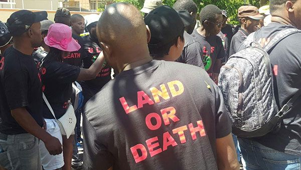 "The Black First Land First (BLF) will forcefully take land in South Africa as Zimbabwean President Robert Mugabe did, the movement's leader, Andile Mngxitama, said on Thursday. ""Land doesn't come through voting. Those who say vote for us and we will give you your land are lying to you. If you want land, you take"