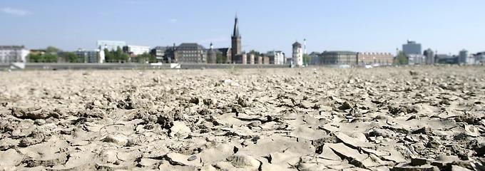 Vertrocknetes Rheinufer bei Düsseldorf: Der Klimawandel lässt Hitzewellen künftig häufiger auftreten.