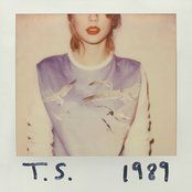 Taylor Swift Blank Space Mp3 Download