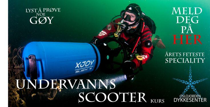 Hit kan du dra hver søndag og bli med på dykkerturer