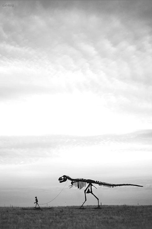 T~Rex Skeleton on a leash going for a walk...hmm!