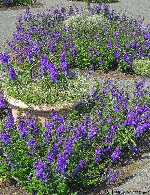 New York Botanical Garden Bronx Ny Botanical Gardens 400 x 300