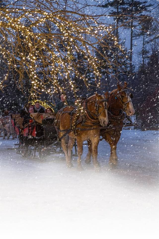 What could be better than snow, lights, horses....sleigh ride chocolate tour in New Hampshire