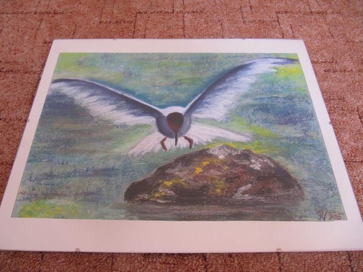 Racek Soft pastel - Seagull