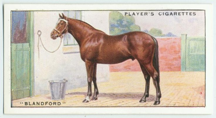 """""""Blandford"""". From New York Public Library Digital Collections."""