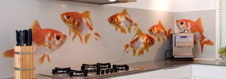 Our pimped kitchens section shows you our splashback designs in a finished kitchen: Goldfishes, larger than life