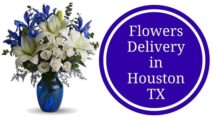 Flowers Delivery Houston TX | New Baby Boy Flowers in Texas