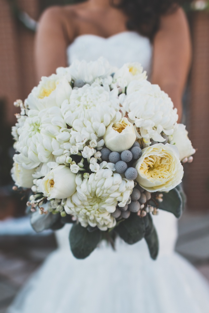 A Beautiful Hand Tied Bridal Bouquet Of White Garden Roses White Football Mums Silver Brunia