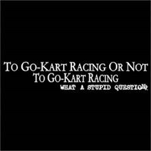To Go Kart Racing Or Not To Go Kart Racing, What A Stupid Question T-Shirt