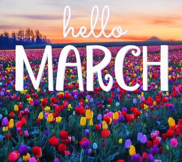 hello march month spring quotes morning happy sun blessings flowers welcome september instagram well almost months bye monday things gentle