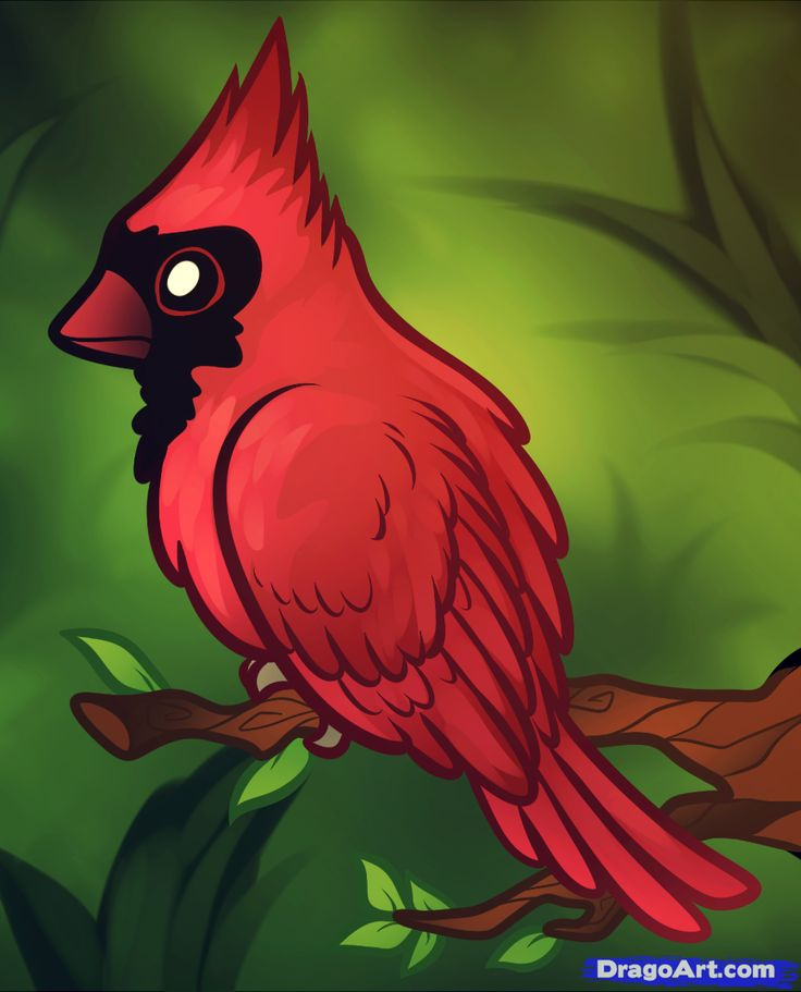 mircosoft paint how to draw birds